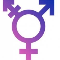 cfm-regulamenta-mudanca-de-sexo-para-mulheres-transexuais